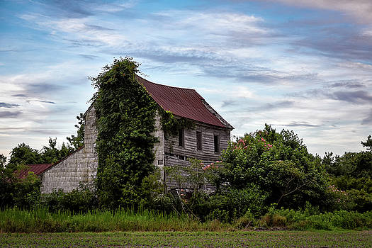 What Once was Home by Jeremy Clinard