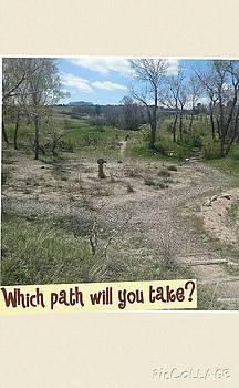 What path will you take? by Katie Wamsley-Yavuz