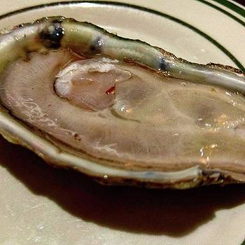 what Strikes The Oyster Shell Does by Annette Holland