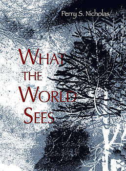 Don Mitchell - What the World Sees Book Cover