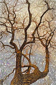 James Steele - What We See The Mind Believes