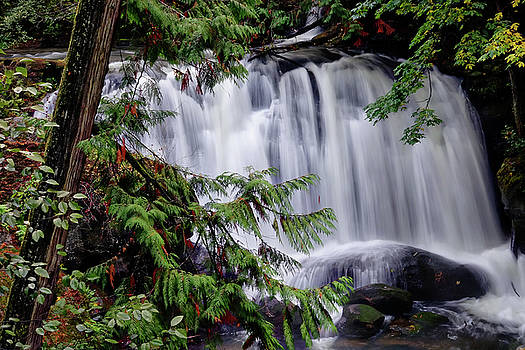 Whatcom Falls Cascade by Rick Lawler