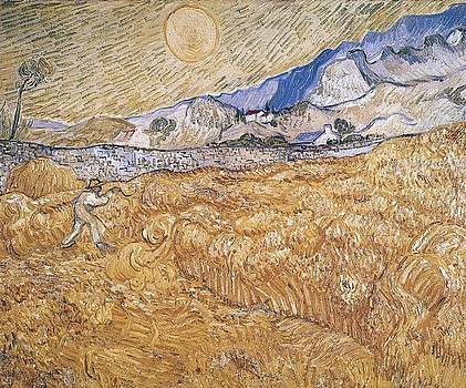Wheat Field With Reaper Harvest In Provence by Artistic Panda