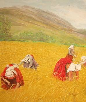 Wheat Harvest by Kim Lucianovic