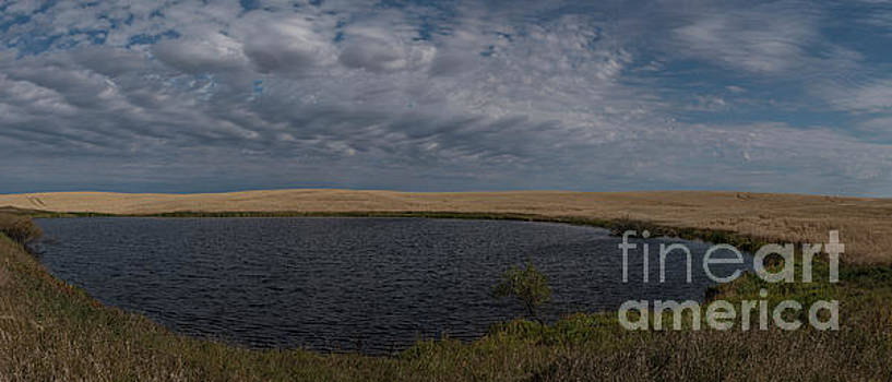 Rod Wiens - Wheatland pond