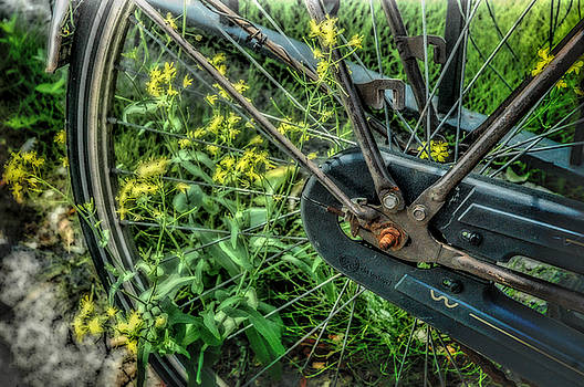 Wheel and Flowers by Helen Worley
