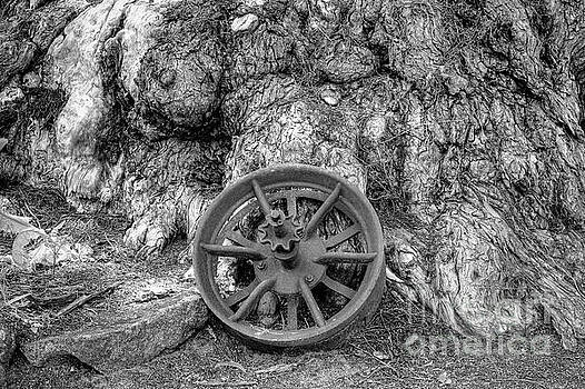 Wheel of Time by Elaine Teague