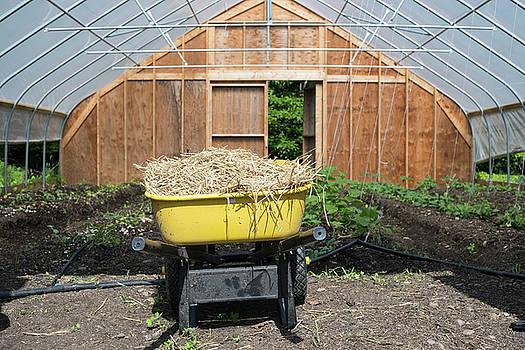 Wheelbarrow and Greenhouse by New England Photographic