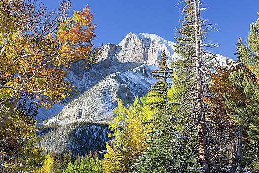 Wheeler Peak by Craig Sanders