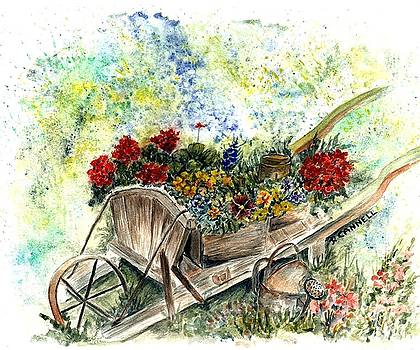 Wheep barrel flowers by Darren Cannell