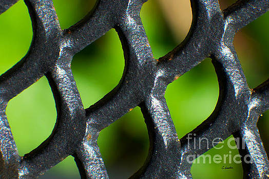 When Iron Meets Nature Abstract by Claudia Ellis by Claudia Ellis