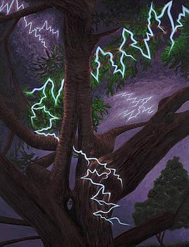 When Lightning Doesn't Strike by Lisa Jeanne Graf