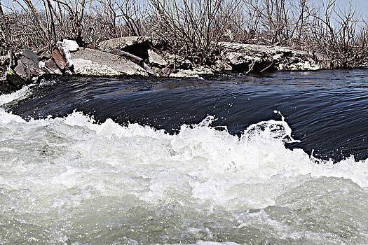 When the River Flows by Bessie Reyes