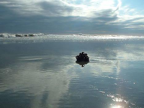 When the sky kissed the ocean by Elena Tudor