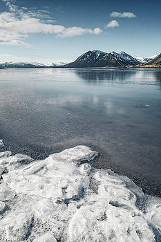 Evelina Kremsdorf - When Water Became Ice