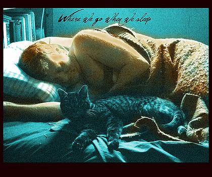 When We Sleep by Diana Ludwig
