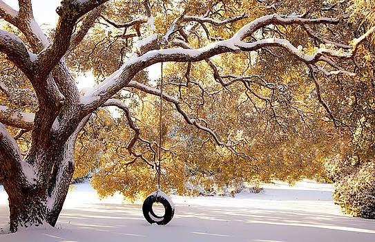 When Winter Blooms by Karen Wiles