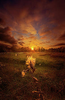 Where Ever Life Takes Us by Phil Koch
