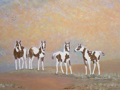 Where Painted Ponies Play by Patti Lennox