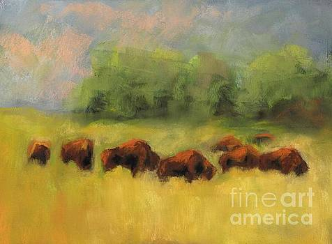 Where the Buffalo Roam by Frances Marino