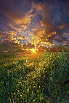 Where The Grass Is Always Greener by Phil Koch