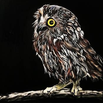 Whet Owl by Stella Marin