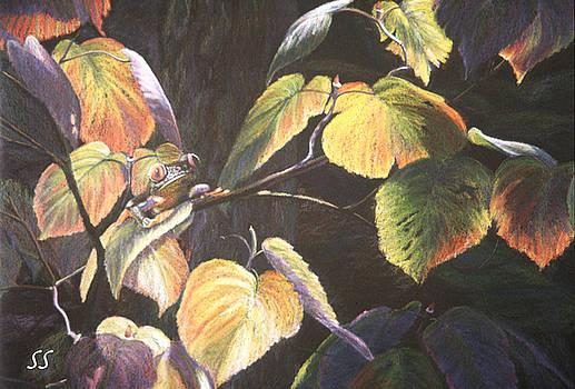 Which Hopper? by Susan Sarabasha
