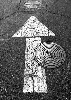 Which Way to the Sewer ? by Douglas Fromm