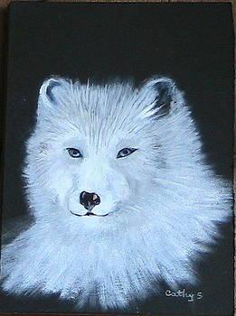 Wolf by Catherine Swerediuk