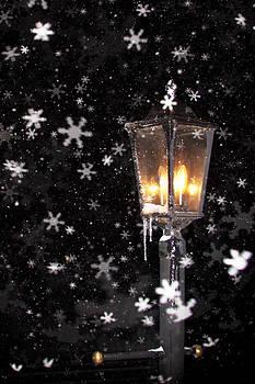 Whimsical Snowflakes Blizzard of 2016 by Mark Van Scyoc