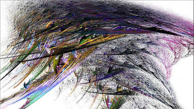 Whirlwind by Dwayne Jahn
