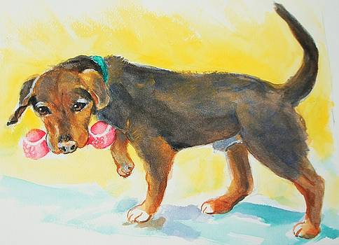 Whiskey Dog by Ruth Mabee