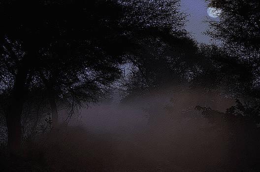 Whispering Mist by Manjot Singh Sachdeva