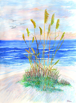Whispering Sea Oats by Ben Kiger