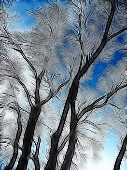 Whispering Wind  by Bobbie Barth