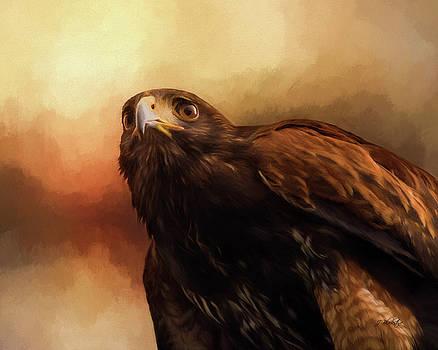Whispers Of The Heart - Hawk Art by Jordan Blackstone