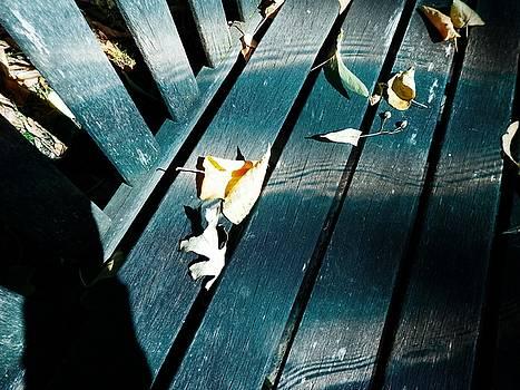 Whispers Of Winter by Deborah Kunesh