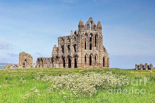 Whitby Abbey, Yorkshire Heritage by Colin and Linda McKie