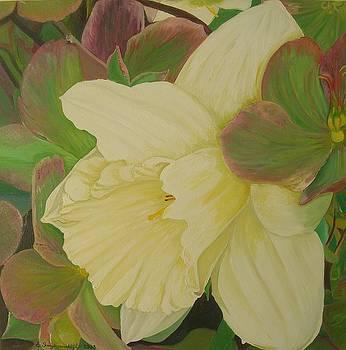 White beauty by Ewald Smykomsky
