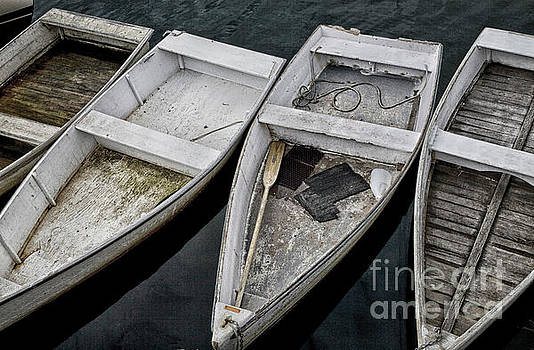 White Boats by Timothy Johnson