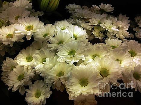 White Bouquets by Jasna Dragun