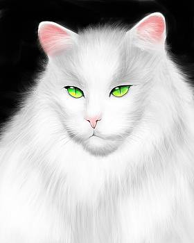 White Cat by Salman Ravish