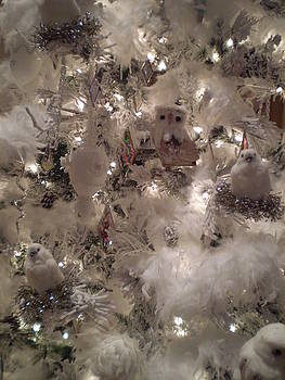 White Christmas Owls Nest by Ricky Kendall