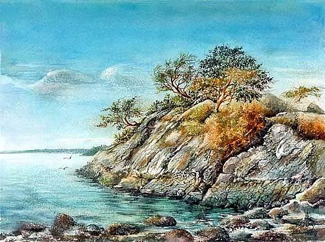 White Cliff by Dumitru Barliga