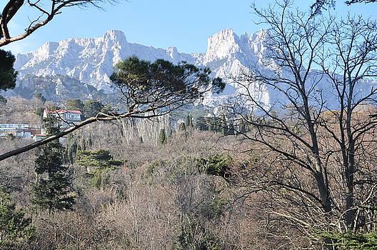 White Cliffs by Alan Lancaster