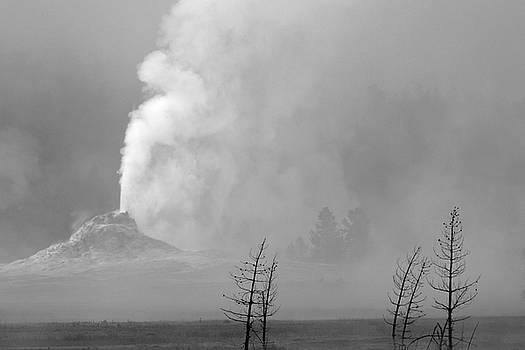 White Cone Geyser Black and White by Bruce Gourley