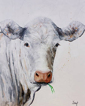 White Cow Munching on Grass by Gray Artus