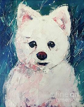 White Dog by Alan Metzger