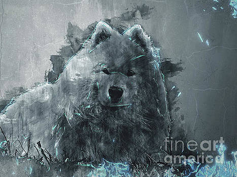 White Dog by Ivan Gomez