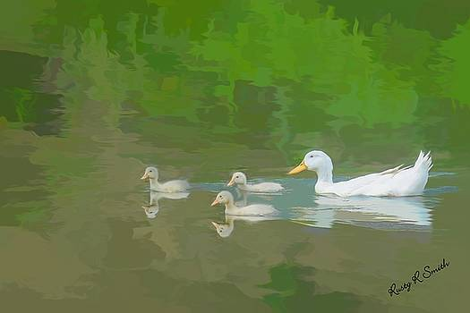 White duck three ducklings. by Rusty R Smith